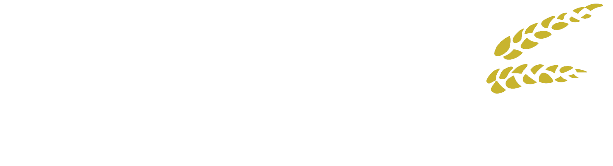 Breweria - OD Slimák